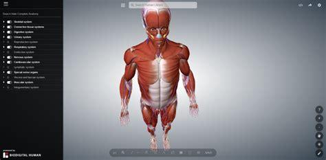 Anatomy Amp Physiology I Resources Alan M Batt