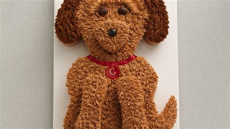 cute golden doodle dog cake recipe from betty crocker
