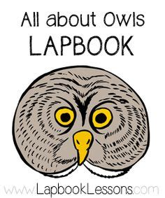 Printable Owl Lapbook | 1000 images about birds of prey on pinterest birds of