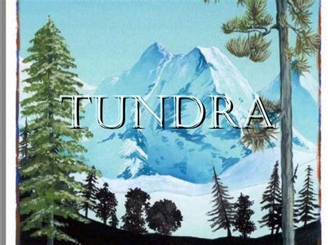 maquetas de la tundra tundra y taiga