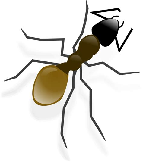 ants clipart ant clip at clker vector clip