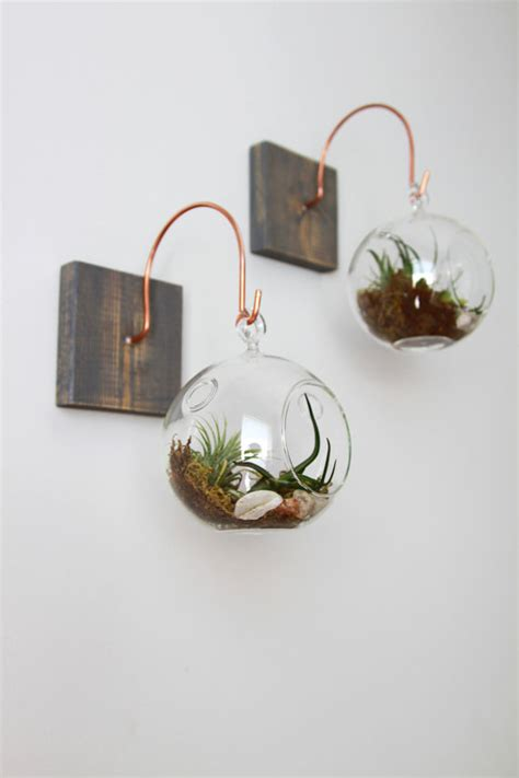 Handmade Decor - wood and copper mount with terrarium unique wall decor
