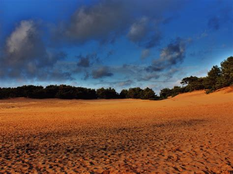 pics of nature landscape yellow sand the blue sky green plants incredible look free