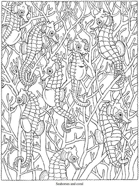 ocean animals coloring pages for adults creative haven seascapes coloring book drawing and art