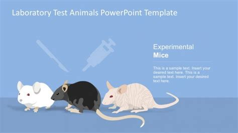Laboratory Test Powerpoint Templates Animal Powerpoint Templates