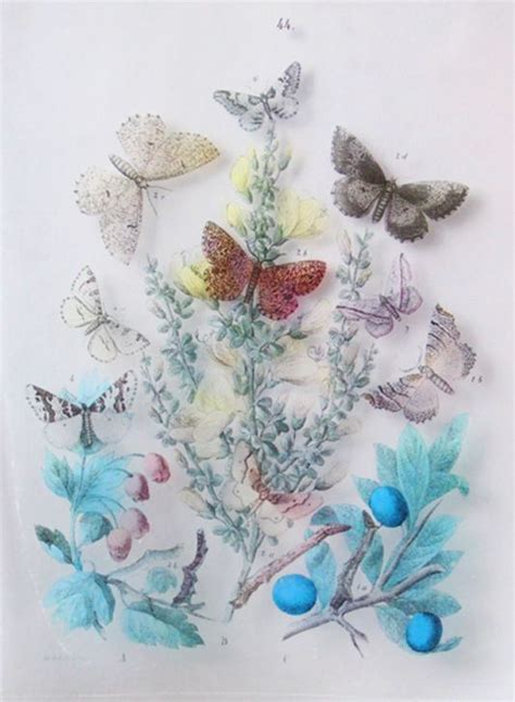 Clear Contact Paper Crafts - diy clear contact paper transfers onto glass paper