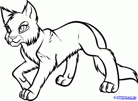 warrior cats coloring pages free free coloring pages of warrior cat kits