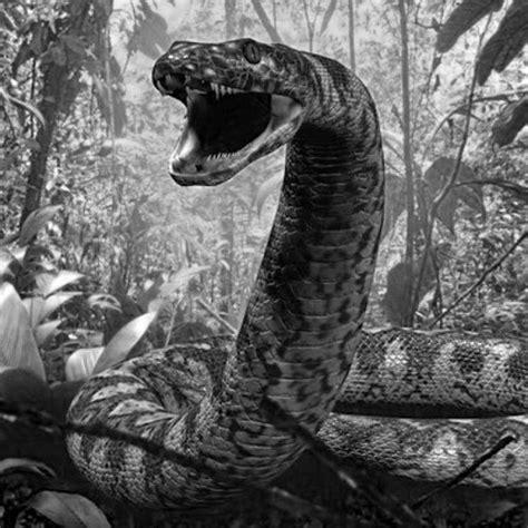 film manusia ular penungu hutan yacu mama siluman ular raksasa jahat penunggu sungai