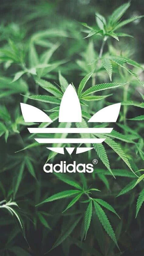 wallpaper for iphone 6 weed 25 best ideas about weed wallpaper on pinterest smoke