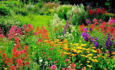 country flower gardens country flower gardens gardening flower and vegetables