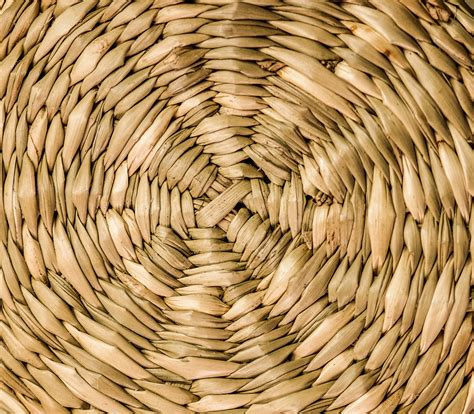 Sedotan Spiral Sedotan Unik Sedotan Spiral gambar pohon cabang struktur menanam kayu tekstur daun bulat spiral bagasi pola