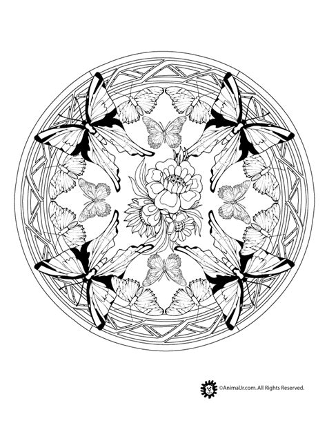 mandala coloring pages for adults animals animal mandala coloring pages butterfly mandala coloring