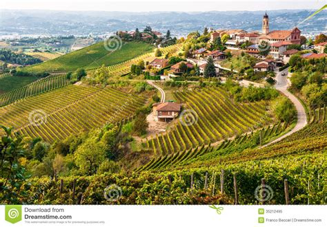Slope House vineyards in italy royalty free stock photo image 35212495