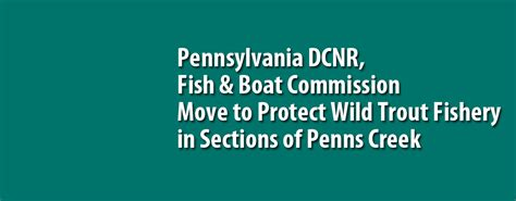 pa fish and boat commission wild trout streams pennsylvania dcnr fish boat commission move to protect