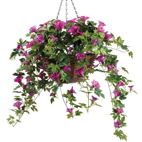 coopers of stortford petunia hanging basket from coopers of stortford