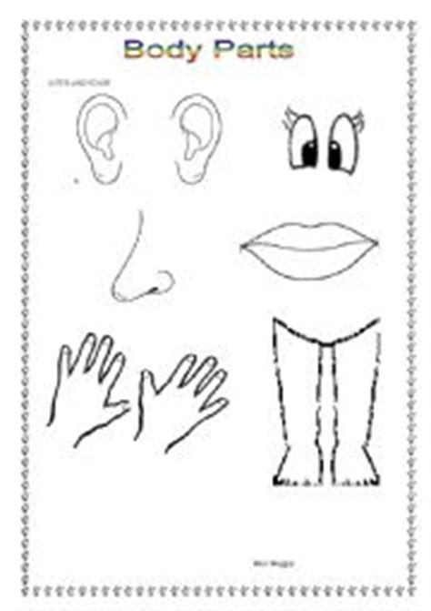 ages of body parts colouring pages