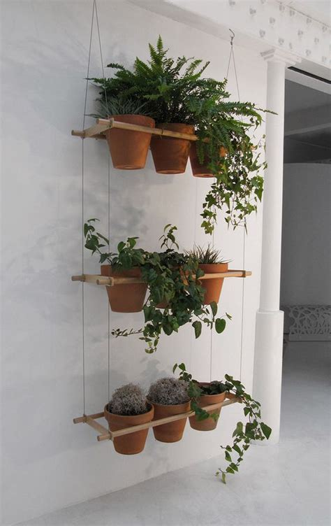 hanging herbs pumped about plants gardens planters and herbs garden