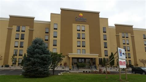 comfort inn suites lexington ky hotels rainmaker hospitality