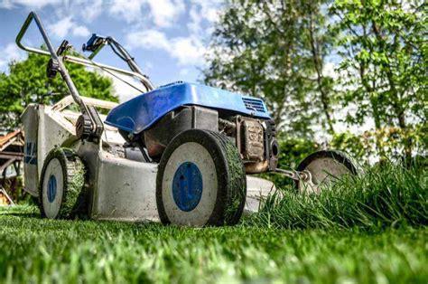 stipendio giardiniere mestieri da scegliere il giardiniere mestiere