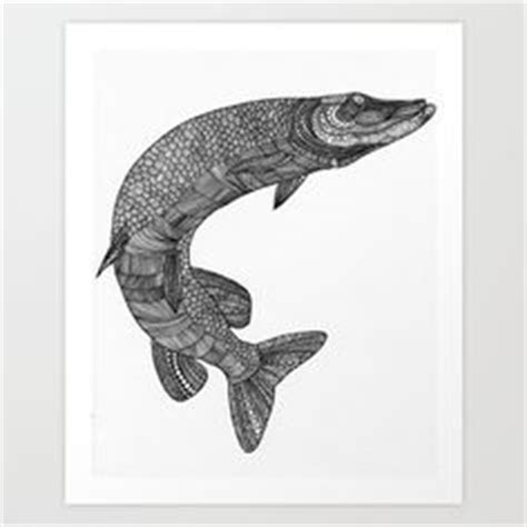 pike tattoo designs northern pike drawings northern pike skull brochure