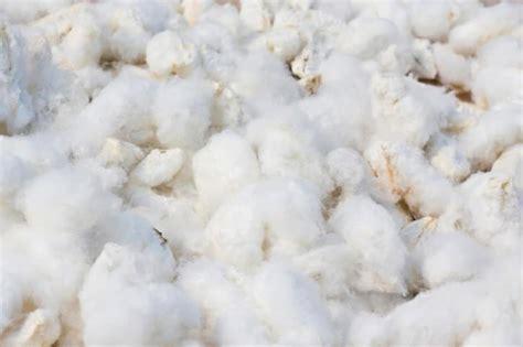 tappeti fibre naturali tappeti in fibre naturali o sintetiche