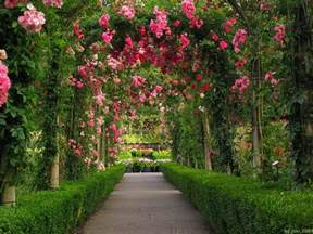 Garden Pictures by Rose Garden Wallpapers Wallpaper Cave