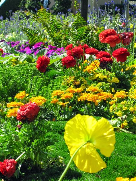 International Flowers by 22nd Epcot International Flower And Garden Festival