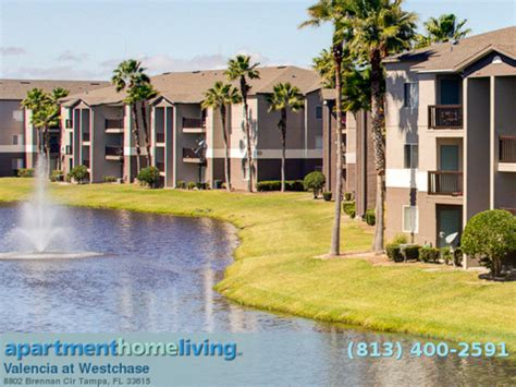 appartments for rent in florida valencia at westchase apartments ta apartments for rent ta fl