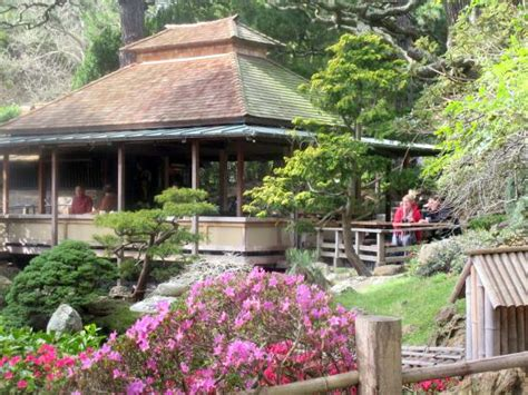 Tea Garden San Diego by View From Table During Lunch Japanese Tea Garden San