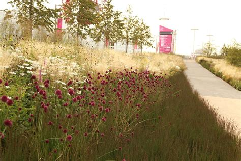 sarah price landscapes 187 olympic gardens europe