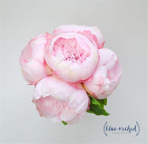 Wedding Bouquet Light Pink by Silk Peony Bouquet Bridesmaid Bouquet Light Pink Peonies