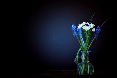 blue wallpaper porter vase beautiful photography with good lighting full hd wallpaper