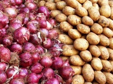 Shelf Of Onions by Strict Guidelines On Potato And 187 Northeast Today