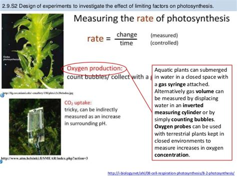 design experiment photosynthesis bioknowledgy 2 9 photosynthesis