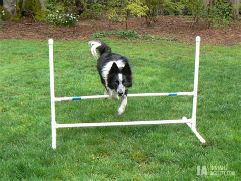 how to agility at home how to make a agility jump at home dogs hairstyles