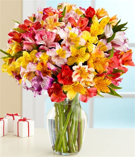 Send Flowers Cheap by Cheap Flowers To Send Driverlayer Search Engine
