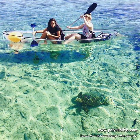 clear bottom boat transparent clear glass bottom boat with elegant design