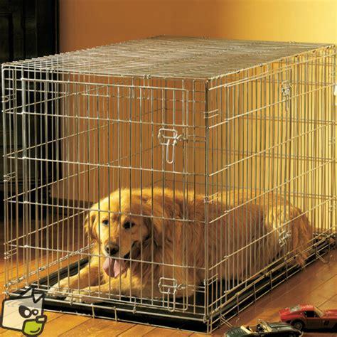 cage acier avec porte pour enfermer le chien a la maison
