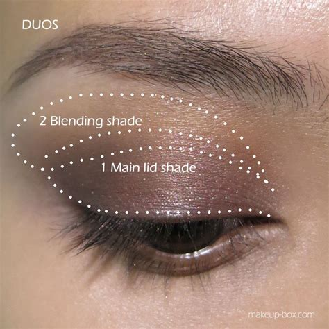 tutorial on eyeshadow application great tutorial on eye makeup plus brush guide for large