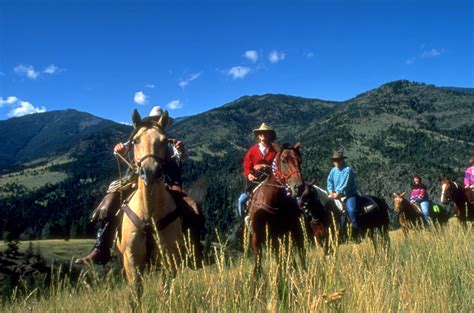 top 10 places for horse riding in india tour my india