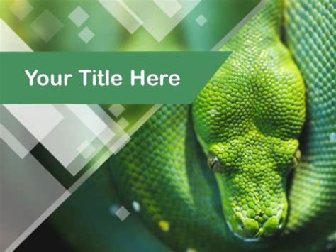 reptile powerpoint templates myfreepptcom