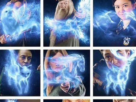 expecto patronum test the ultimate patronus quiz playbuzz