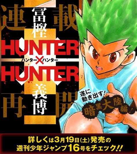 hunter x hunter return and retire hunter x hunter manga to return from more than a year of
