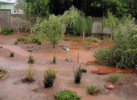 backyard desert landscape designs backyard desert landscaping photos the interior