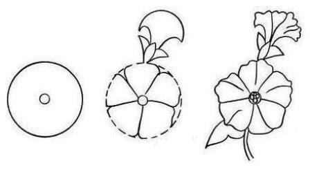 langkah langkah menggambar bunga teratai