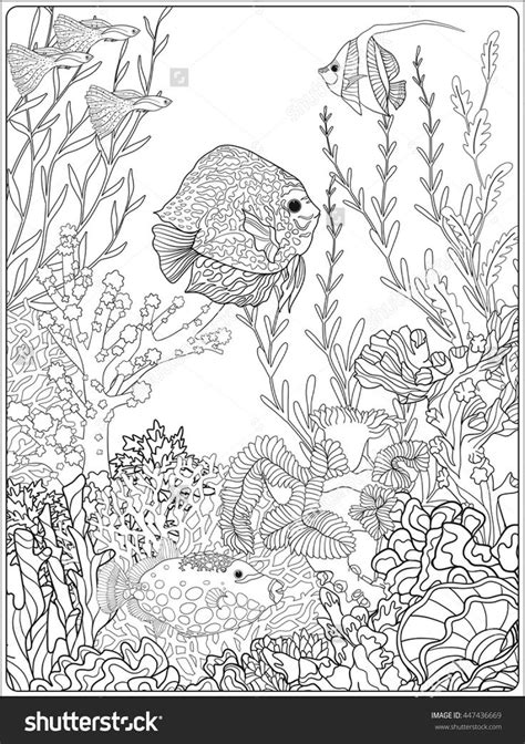 coloring pages for adults underwater 127 best images about colorir paisagens aqu 225 ticas on pinterest
