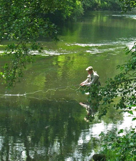 1000 images about fly fishing rl 1 darley dale fly fishing club