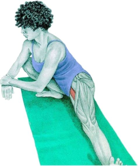 libro stretching to stay young 34 stretches to stay young and healthy with pictures