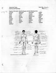 Anatomy And Physiology Regions Worksheet by Anatomical Terms Worksheet Anatomical Terms Name 4 1