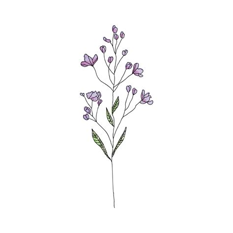 wildflower habitatt supply co